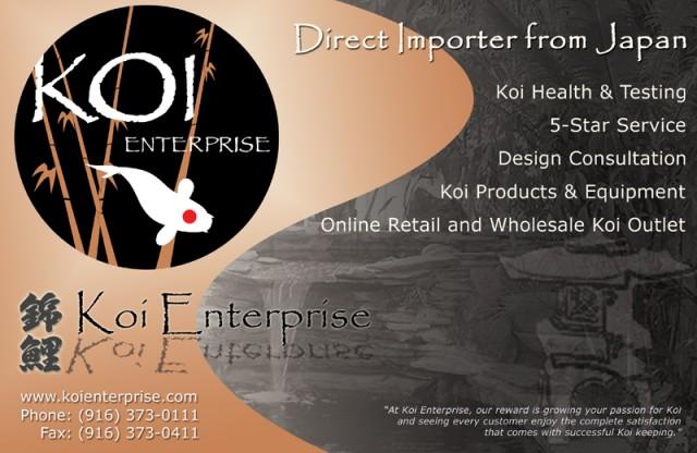 Magazine AD Design - Web - Brochure and AD Design